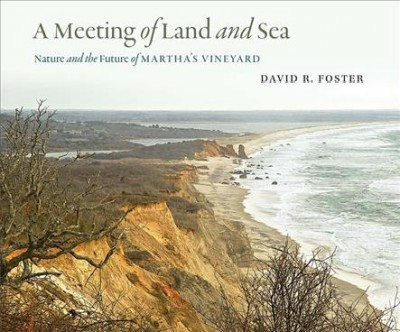 A Meeting of Land and Sea