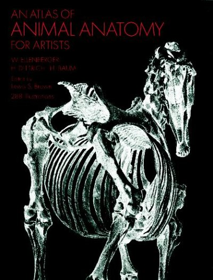 An atlas of animal anatomy for artists /