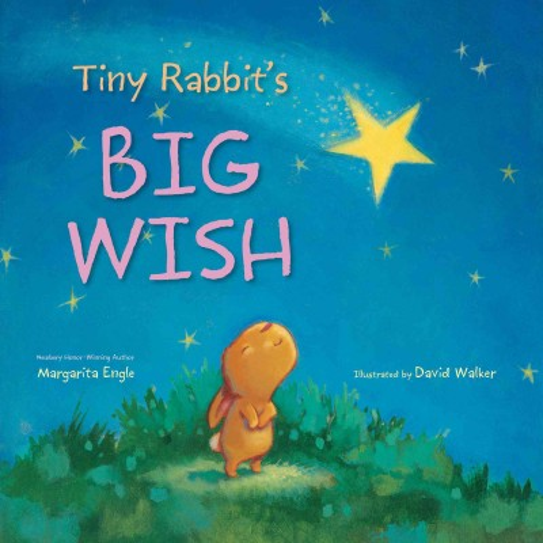 Tiny rabbit's big wish 書封