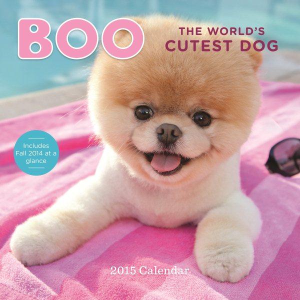 Boo the World's Cutest Dog 2015 Calendar