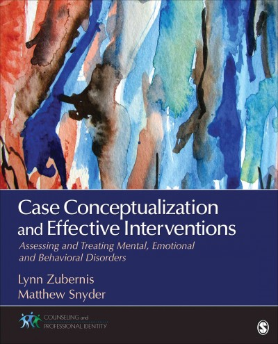 Case conceptualization and effective interventions : assessing and treating mental, emotional, and behavioral disorders /