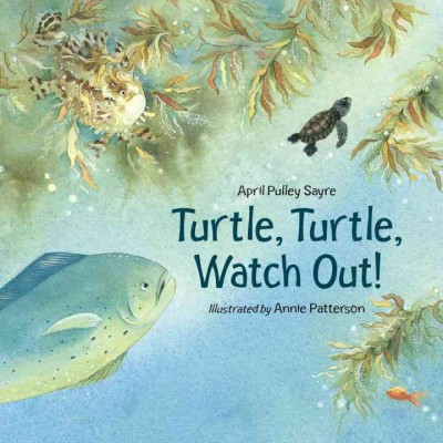 Turtle, turtle, watch out! /