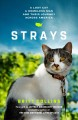 Strays : a lost cat, a drifter, and their journey across America