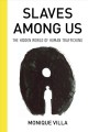 Slaves among us : the hidden world of human trafficking