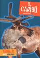 El caribú
