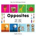 Opposites English-chinese