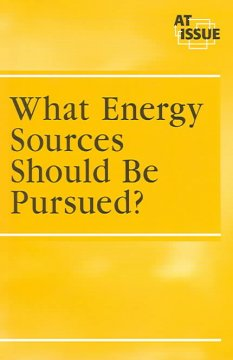 What Energy Sources Should Be Pursued?