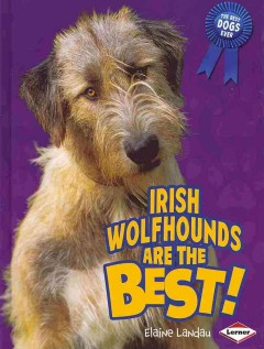 Irish Wolfhounds Are the Best!