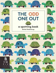Look & Find Picture Puzzle Books cover