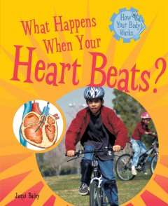 What Happens When your Heart Beats?