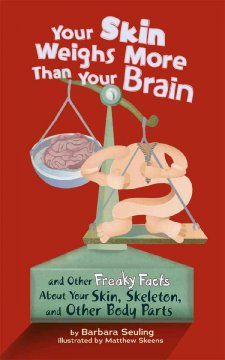 Your Skin Weighs More Than your Brain