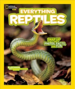 Everything Reptiles