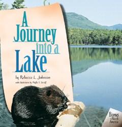 A Journey Into A Lake