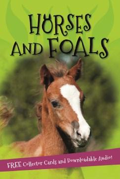 Horses and Foals