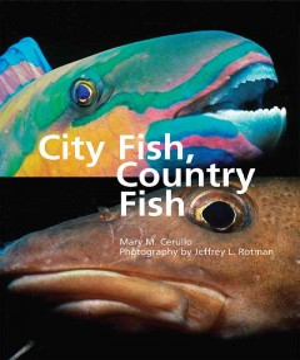 City Fish, Country Fish - Cerullo, Mary M.