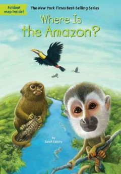 Where Is the Amazon?