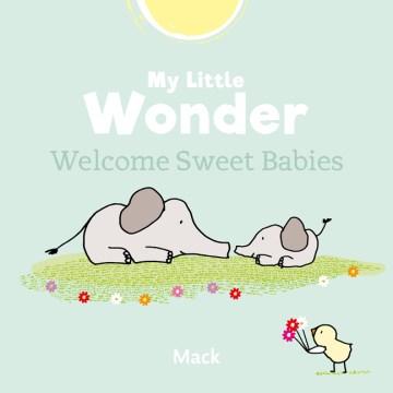 Welcome Sweet Babies