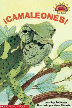 Camaleones!