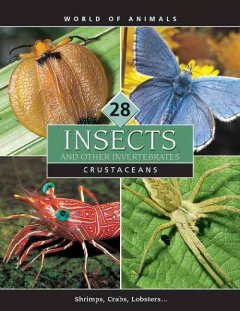Insects and Other Invertebrates