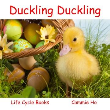 Duckling Duckling