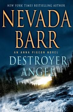Destroyer Angel
