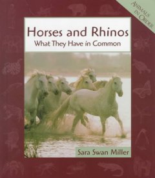 Horses and Rhinos