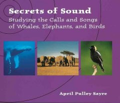 Secrets of Sound