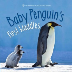 Baby Penguin's First Waddles
