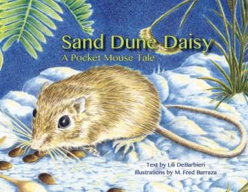 Sand Dune Daisy