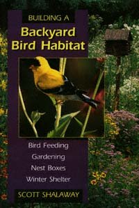 Building A Backyard Bird Habitat