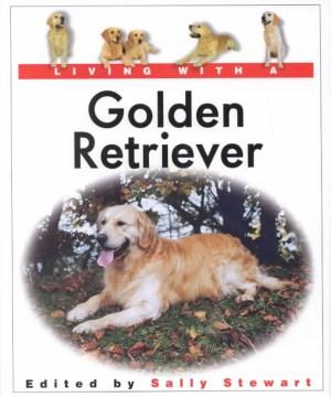 Living With A Golden Retriever