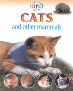 Cats and Other Mammals