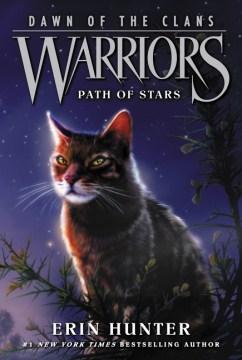 Path of Stars