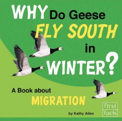 Why Do Geese Fly South in Winter?