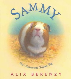 Sammy the Lonely Guinea Pig