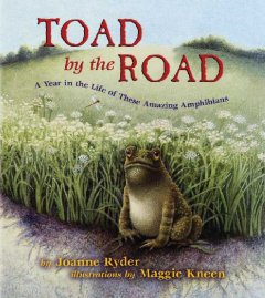 A Toad by the Road