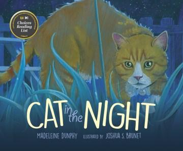 Cat in the Night