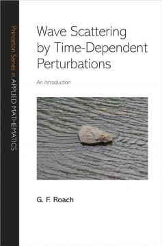 Wave Scattering by Time-dependent Perturbations