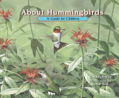 About Hummingbirds