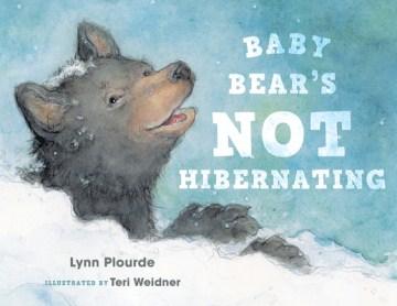 Baby Bear's Not Hibernating
