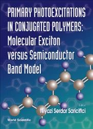 Primary Photoexcitations in Conjugated Polymers