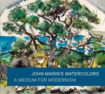 John Marin's Watercolours : A Medium for Modernism