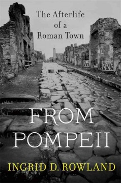 From Pompeii : the Afterlife of A Roman Town