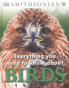 Smithsonian Everything You Need to Know About Birds