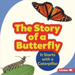 The Story of A Butterfly