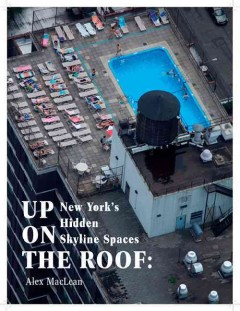 Up on the Roof : New York's Hidden Skyline Spaces