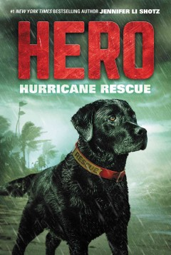 Hurricane Rescue
