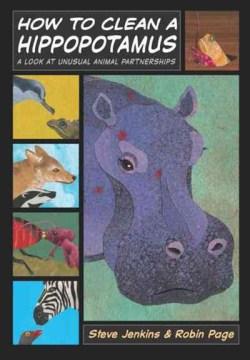 How to Clean A Hippopotamus