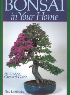 Bonsai in Your Home : An Indoor Grower's Guide