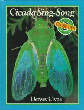Cicada Sing-song